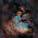 NGC7822 in bicolor,                                Prath Pavaskar