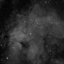 IC1318 Nebula - Ha,                                Emilio Zandarin