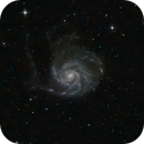 M101,                                Andrés Ruiz de Va...