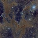 Chamaeleon Molecular Cloud Complex (featuring The Thumbprint Nebula),                                Brian Boyle