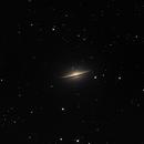 M104 2020,                                Coenie