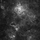 NGC 2070 Tarantula Nebula,                                Renan