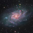 The Triangulum Galaxy -  Full Field,                                Arnaud Peel