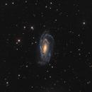 NGC 5033,                                Yves