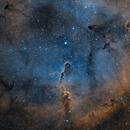 IC 1396 in SHO,                                Alex Roberts