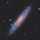 NGC253 The Sculptor Galaxy LRGB+Ha,                                Christopher Gomez