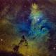 Christmas Tree and Cone Nebula (SHO),                                Alessio Beltrame