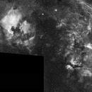 Cygnus Widefield in Hydrogen Alpha,                                Eddie_R