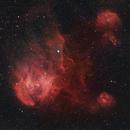 Running Chicken Nebula narrowband,                                Wilson