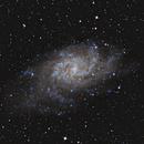 M33 Triangulum Galaxy - Dreiecksnebel,                                Raphael Meier