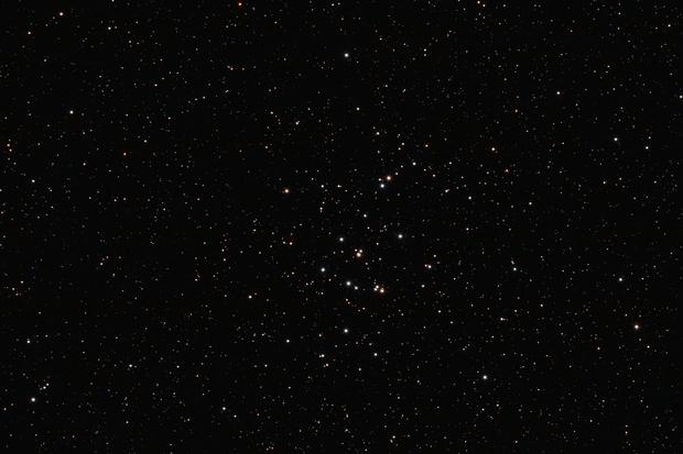 M 44 - Praesepe / Beehive Cluster,                                Thilo