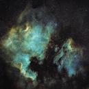 NGC7000 and IC5070,                                Sharky