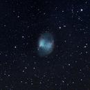 M27, the Dumbbell Nebula,                                Brendan Devine