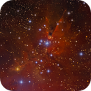 Cone Nebula and Christmas Tree Cluster NGC2264,                                Serge