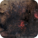 Cat's Paw and Lobster Nebulae,                    Gabriel R. Santos...