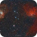 IC405 and IC410, The Tadpole and Flaming Star Nebulas,                                Eric Watson
