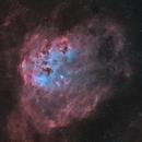 IC 410 - Tadpole Nebula - Dec/Jan/Feb 2020/21 - Bicolor v1,                                Martin Junius