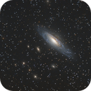 Deer Lick group : NGC 7331 and Co,                                Patrice RENAUT