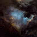 NGC7000,                                João Berbereia