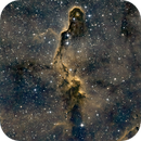 Elephant's Trunk Nebula,                                Barry Trudgian