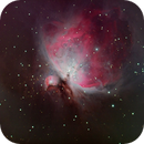 M42,                                Christopher Maier
