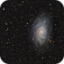M 33,                                  Paul Muskee