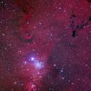 NGC2264 (Cone Nebula), Sh2-273 (Fox fur Nebula), NGC2264(oc), B39, NGC2259; Monoceros,                                Thomas V. Davis