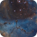 NGC2244 SHO 2 Panel Mosaic,                                Christopher Gomez