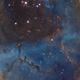 NGC2244 SHO 2 Panel Mosaic,                                Christopher Gomez