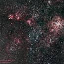 Tarantula Nebula and Surrounding Area,                                Gordon Hansen