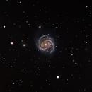 M100 - The Blowdryer Galaxy,                                David N Kidd
