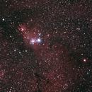 NGC2264 - Nébuleuse du Cône,                                Michel FLEUREAU