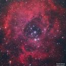 Rosette nebula,                                RAMI SAADAH