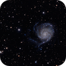 The Pinwheel M101,                                Richard S. Wright...