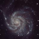 M 101 - Pinwheel Galaxy,                                VoidPointer
