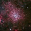 NGC2070 - Tarantula Nebula,                                Carlos