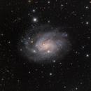 NGC 300,                                DiscoDuck