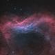 NGC 7822 - Oct 2018 - Bicolor v1,                                Martin Junius