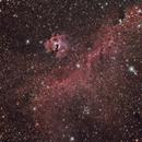 IC2177 Seagull Nebula,                                Jeff Clayton