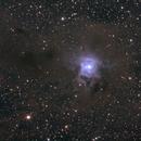NGC7023,                                Bradisback