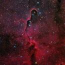 Elephant's Trunk Nebula Closeup in HaRGB v2.0,                                Alan Pham