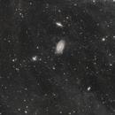 M81, M82 and IFN,                                Sendhil Chinnasamy