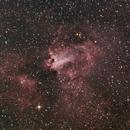 Swan Nebula,                                Charles Ward