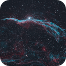 Witch's Broom Nebula,                                Kyle Pickett