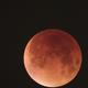 Lunar Eclipse (28/09/2015),                                Robson Hahn