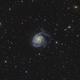 Messier 101 Widefield,                                Elisabeth Milne