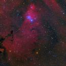 NGC2264 Cone Nebula and Christmas Tree Cluster,                                  LAUBING
