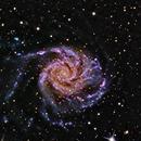 M 101 - Pinwheel Galaxy,                                GalaxyMike