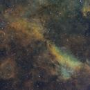 The IC1311 region,                                Gabe Shaughnessy