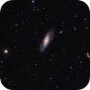 M106 area,                                Peter Shah